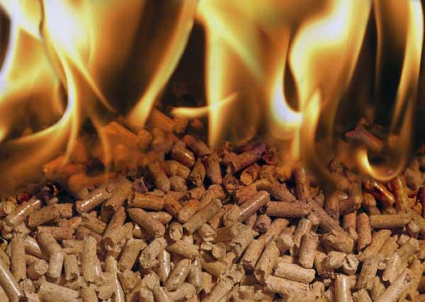 Conoce cómo mantener tu hogar caliente